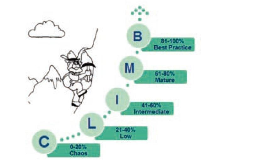 Figura 1. Livelli di maturita' CLIMB