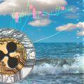 Data Analytics e Machine learning incontrano la passione per il mare